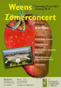 eerdere concerten-2015 voorjaar
